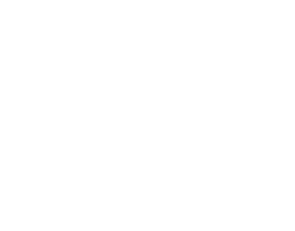 Bottle Bronx